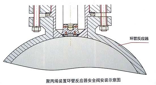 聚丙烯装置环管反应器安全阀安装示意图