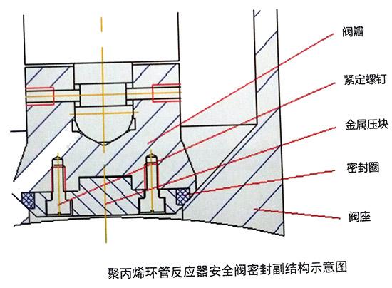 聚丙烯环管反应器安全阀密封副结构示意图